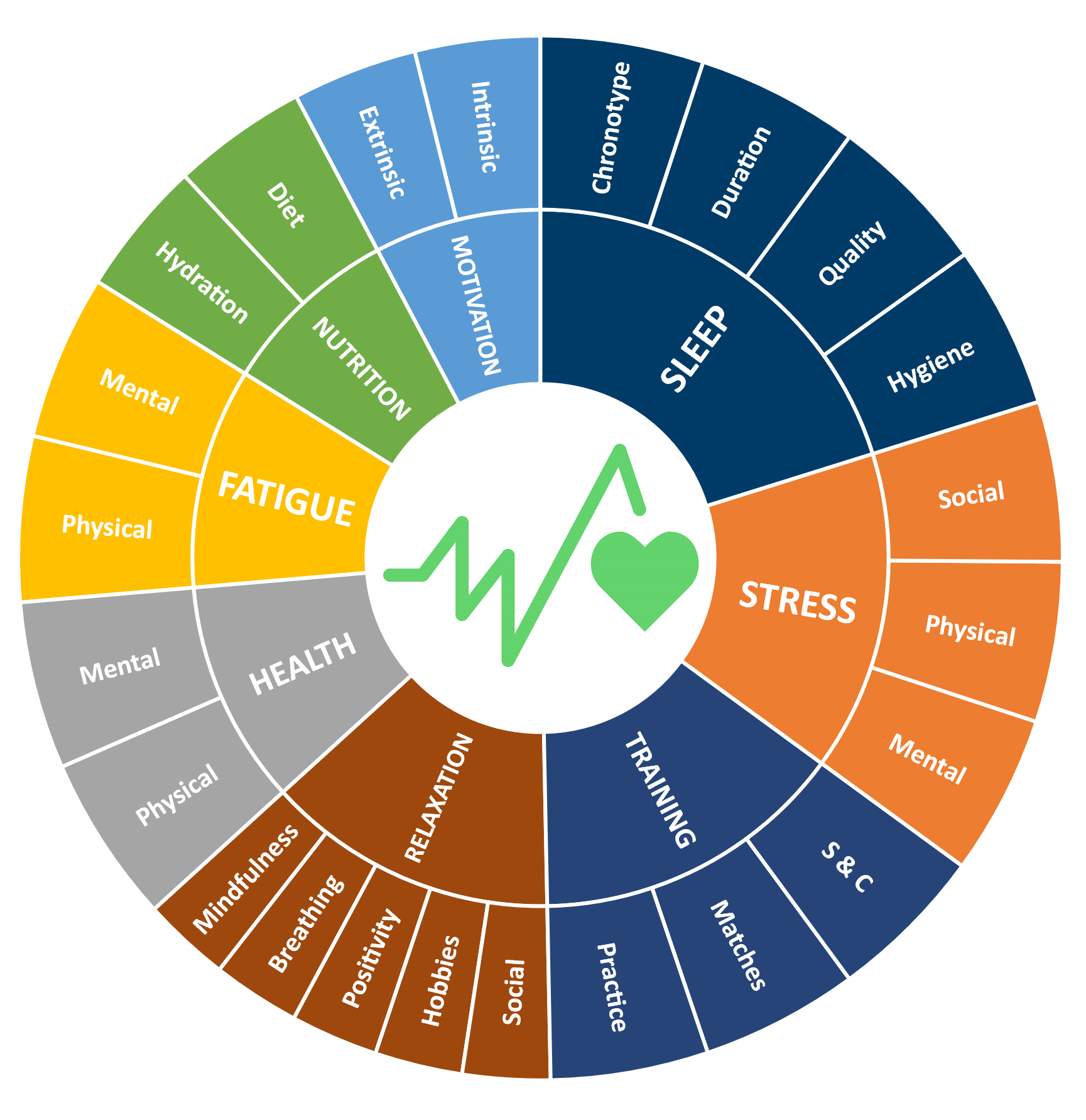 Lifestyle Wheel